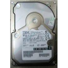 Жесткий диск 18.2Gb IBM Ultrastar DDYS-T18350 Ultra3 SCSI (Кисловодск)
